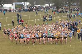 Inter County Cross CountryChampionships
