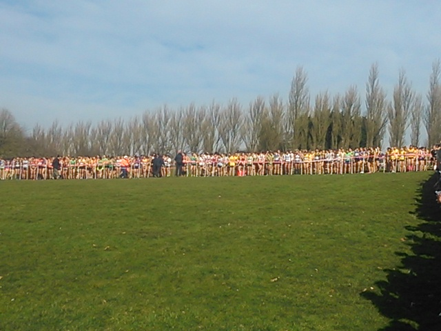 Inter Counties Cross Country Results